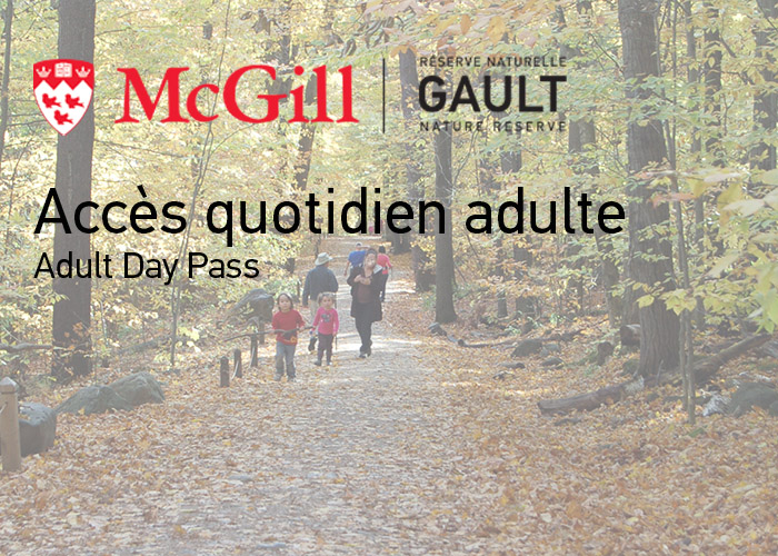 Adult Day Pass 18 +